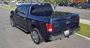 Wanted: 6.5 F150 truck cap wanted 2015