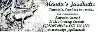 mandys-jagdhuette