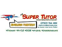 English Tutor/Essay Tutor ~ Qualified Teacher~Don't SLEEP through SUMMER, get SUPER!