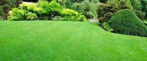 Gardening & Mowing Mooroolbark Yarra Ranges Preview