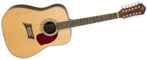 Acoustic Guitar - 12 String by Michael Kelly