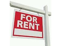 Looking for flat to rent