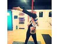 Onyx Aerial & Fitness