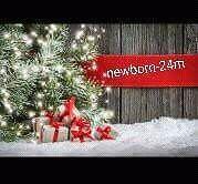 Christmas Minis  Kitchener / Waterloo Kitchener Area image 7