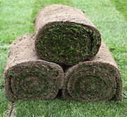 Mississauga Sod Installation - Residential and Commercial