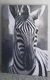 Stunning Zebra canvas Hope Island Gold Coast North Preview