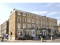 Bright 1 Bedroom Flat With Roof Terrace