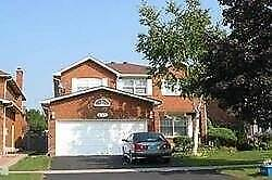 437 Raymerville Dr