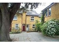 Call Brinkley's today to view this lovely, three double bedroom house BRN1005054