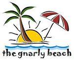 the gnarly beach
