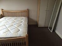 Large room to Let Available now - 100pw