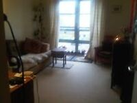 Beautiful flat share in Leith. Mostly sole us whilst owner works away.