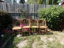 ANTIQUE CAPTAINS CHAIRS Kitchener / Waterloo Kitchener Area image 1