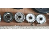 0.5kg weight plates