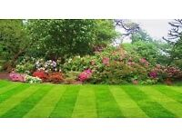 Gardening and grass cutting services