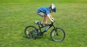 Nice Red Raleigh Kid's or Freestyle Mountain Bike for Sale