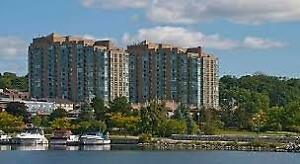 Waterfront Condo Barrie