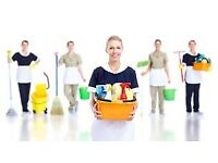 Lucie Cleaning is a professional cleaning company operating in all areas of London.