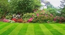 4U Services Lawn  Maintenance Clayton Monash Area Preview