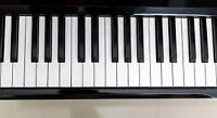 Piano & Voice lessons (Spring/Summer)
