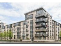 1 bedroom apartment with on site gym included at Fusion