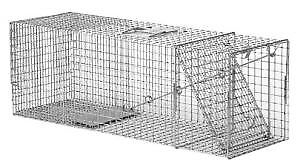 Cage Trappe Animaux