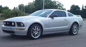 2005 Ford Mustang yes Coupe (2 door)