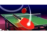 Table Tennis / Ping Pong partner wanted