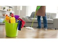 Affordable and Professional Domestic Cleaning Service