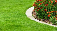 Lawn and Yard Care Services