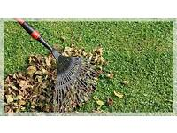Garden cleaner