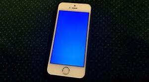 ROGERS I PHONE 5S WORKS GREAT!!