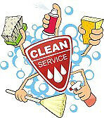 Honest Hard Working Reasonable Cleaning Lady