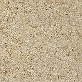 Beige fleck carpet
