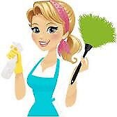 Experienced Housecleaner