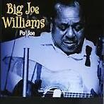 Big Joe Williams - Po' Joe