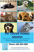 Cat and Dog Foster Homes Needed!