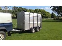 wanted ifor williams 8 ft stock trailer