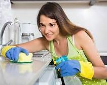 Reliable-Trustworthy HouseCleaner w/References -Annapolis Valley