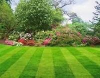 lawn care and spring outdoor clean ups