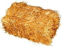Oat Square Straw Bales