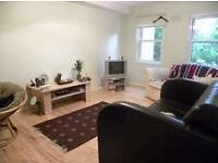 One Double Bedroom Apartment located within Minutes of Forest Hill Train and Overground Station.