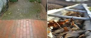 FROM $35 gutters, pressure washing, small tree trimming Blacktown Blacktown Area Preview