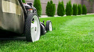 Gardening mowing landscaping and turfing.,