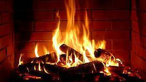 SEASONED SPLIT FIREWOOD