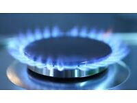Gas and electric cooker repairs Milton keynes and surrounding areas