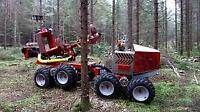 LOOKING FOR FORESTRY WORKERS WITH POWER SAW EXPERIENCE