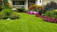 Yard clean up, edging and mowing person needed for Fall River