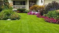 Dawood's Lawn Care Service*