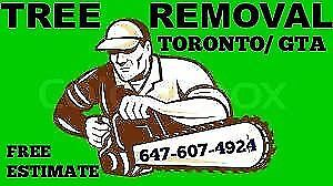 Tree removal branch chipping stump grinding 647-607-4924.